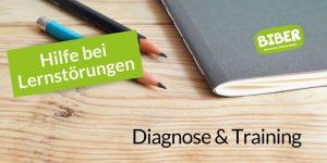 biber-bergstrasse_flyer_lernstoerungen_preview